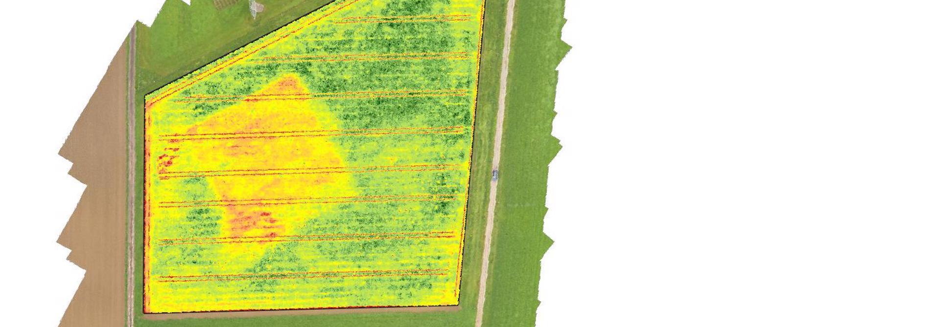 Vegetationsindex eines Feldes auf Basis von Multispektralbildern der Drohne berechnet.>