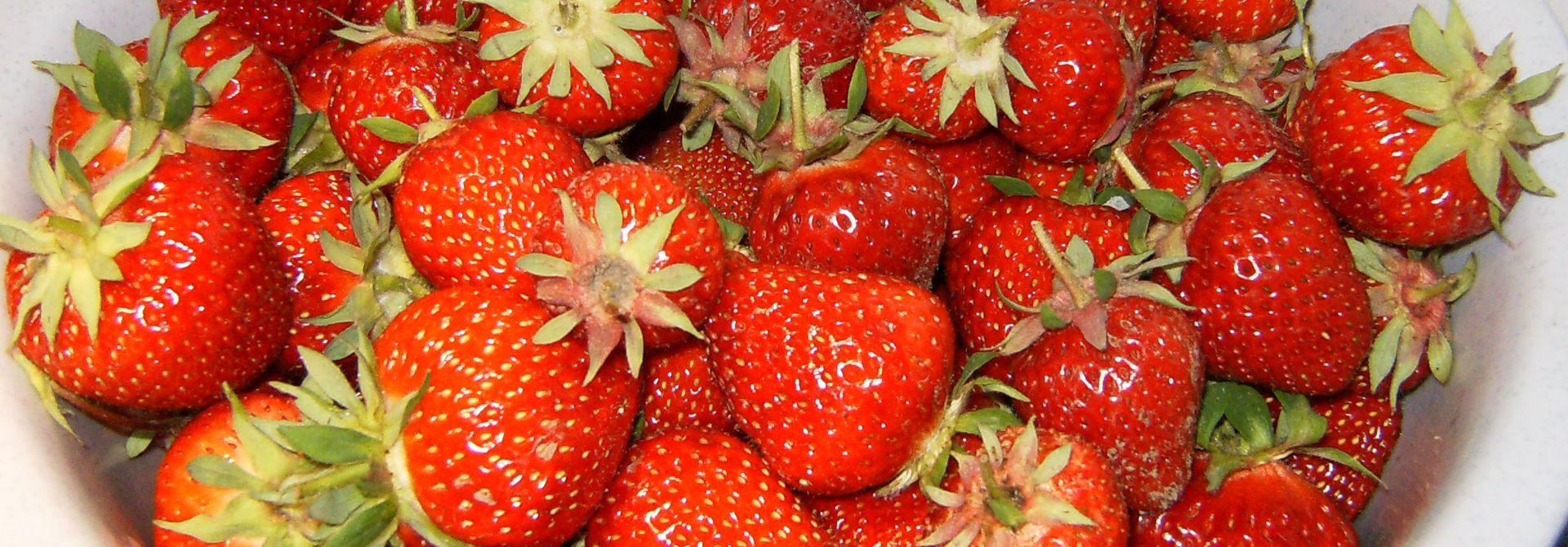 Erdbeeren>