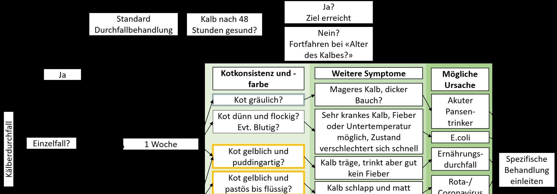 Schema fu00fcr die Erkennung von Ku00e4lberdurchfall (Informationsquelle: Kuhsignale Kontrollbuch, Jan Hulsen, veru00e4ndert durch Selina Hug, Strickhof)>