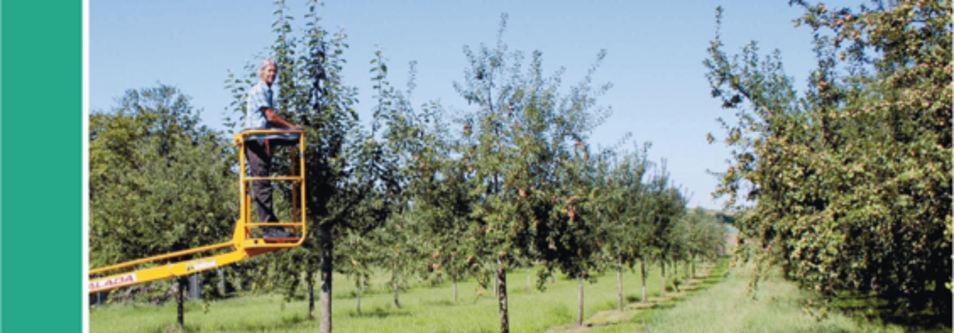 Die Broschu00fcre des FiBL gibt umfangreiche Informationen, wie sich die Obstproduktion und Biodiversitu00e4t auf Hochstammbu00e4umen kombinieren lu00e4sst.>