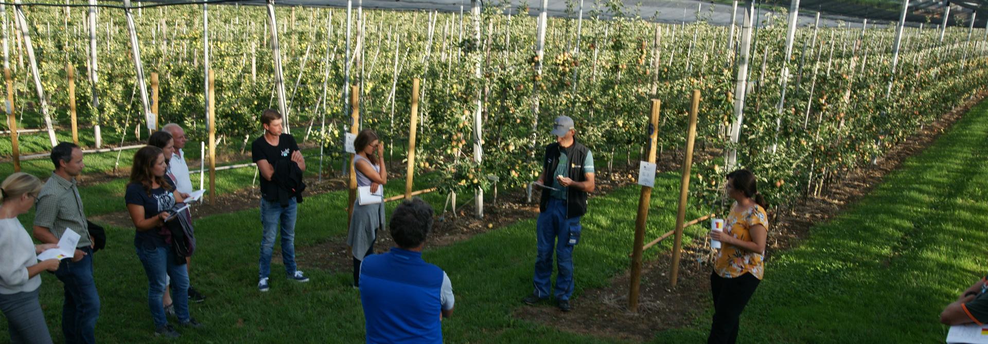 Der Strickhof Obstbau ist speziell als Ausbildungs- und Versuchsbetrieb ausgelegt. Andreas Klu00f6ppel, Betriebsleiter Obstbau, sowie Sarah Perren, Berufsschullehrerin bei den Obstlernenden, zeigten die verschiedenen Anbausysteme, Sortenvielfalt und Unterlagenvergleiche.>