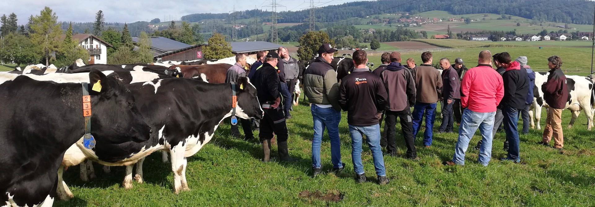 Treffen der Futterbauprofis in den Regionen>
