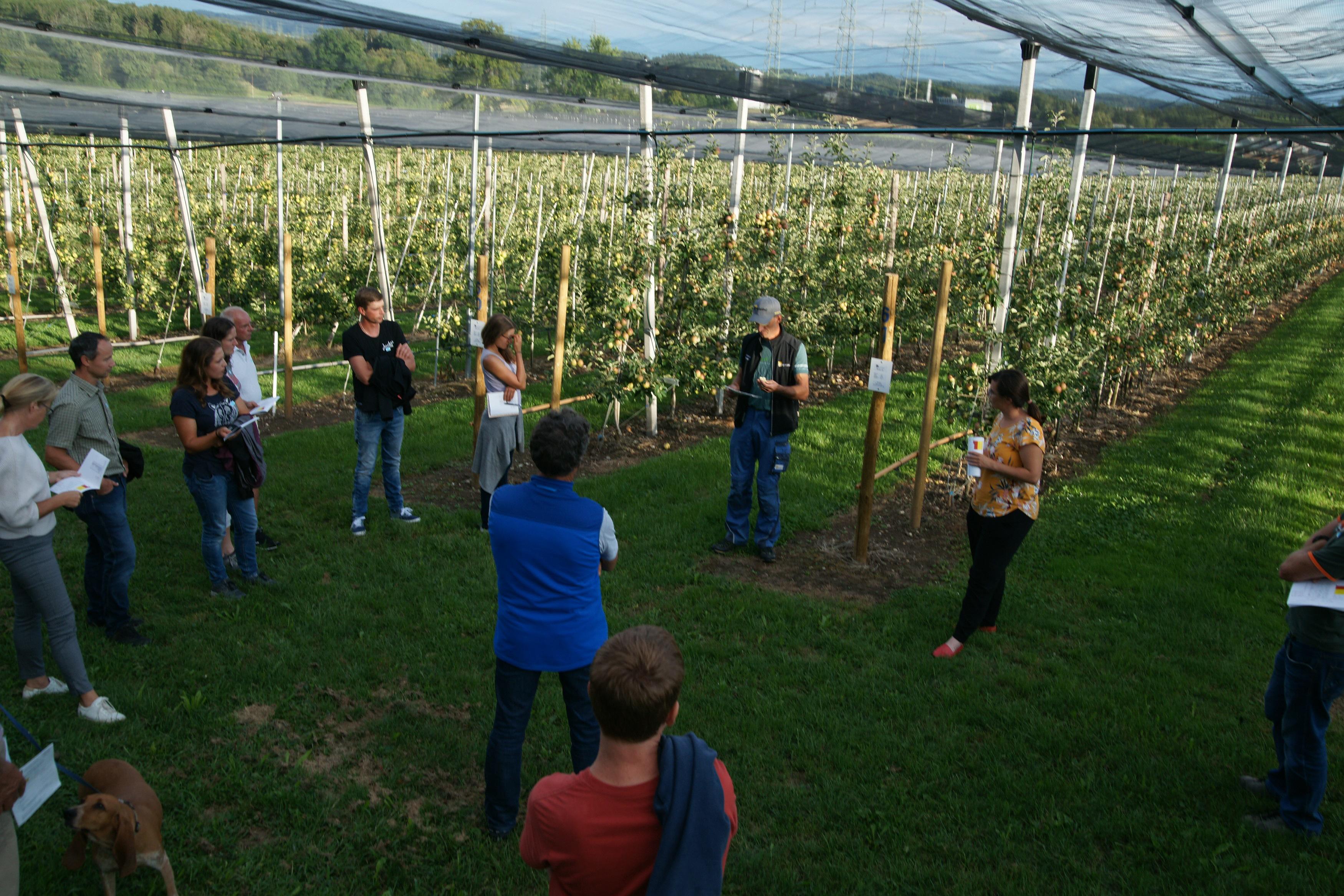 Der Strickhof Obstbau ist speziell als Ausbildungs- und Versuchsbetrieb ausgelegt. Andreas Klöppel, Betriebsleiter Obstbau, sowie Sarah Perren während der Führung an der Obst-Sommertagung 2020