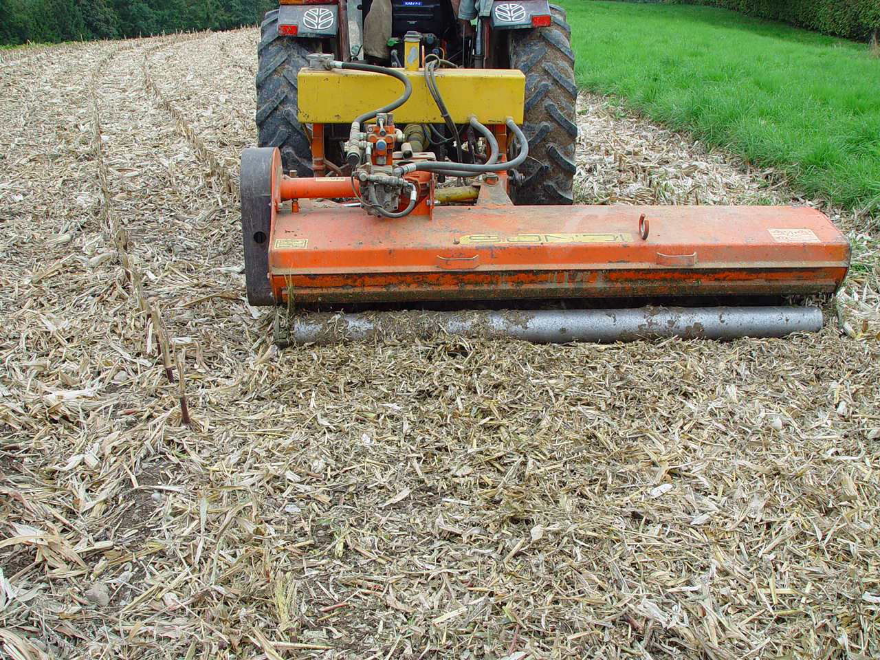 Maiszünsler-Bekämpfung durch Mulchen