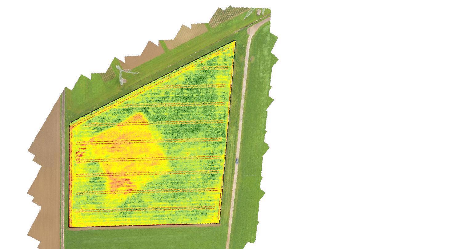 Multispektralaufnahme mittels Drohne Parzelle Hinteracker