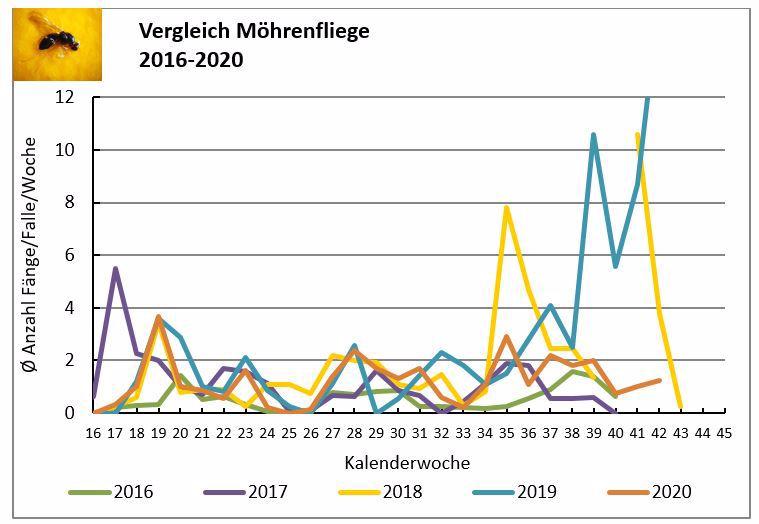 Entwicklung des Flugs der Möhrenfliege im langjährigen Vergleich