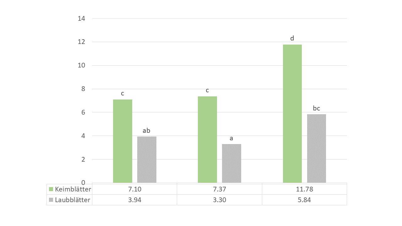 Abbildung 2. Mittelwert der Anzahl Frassschäden auf den Keimblättern und auf den Laubblättern. Signifikante Unterschiede sind mittels verschwinden Buchstaben gekennzeichnet (p<0.05).