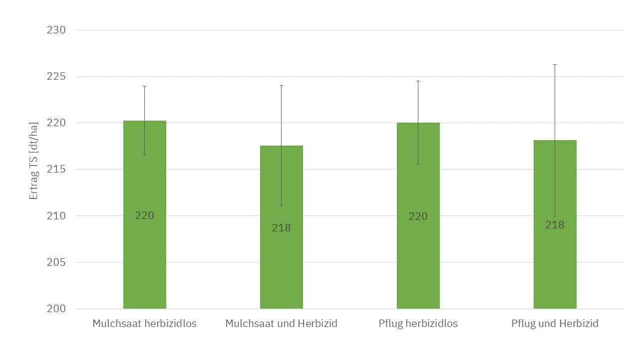 Abbildung 1. Erträge in dt TS/ha für den Standort Strickhof, Standartabweichung ist mit den Fehlerindikatoren angezeigt.