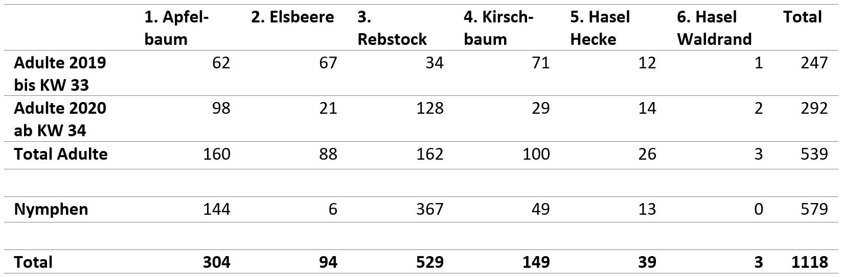 Tabelle Marmorierte Baumwanze Totale Fangzahlen der Standorte