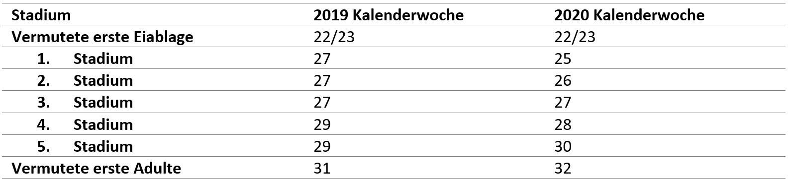 Tabelle Marmorierte Baumwanze Vergleich Erstauftreten Nymphen 2019 & 2020