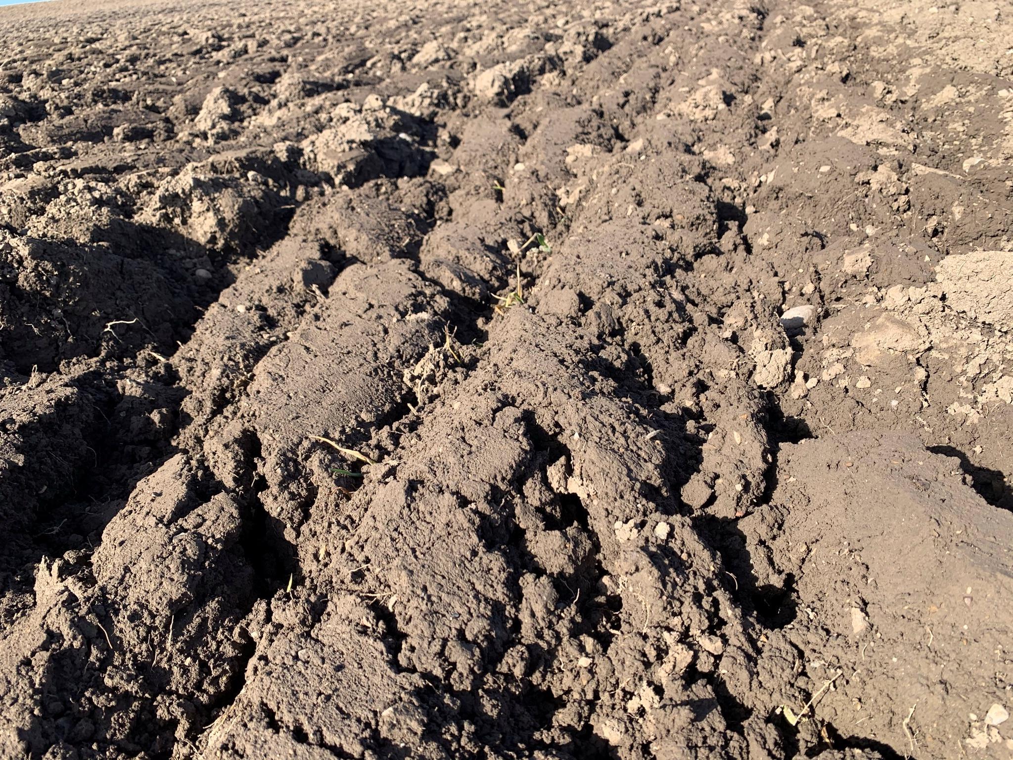Feuchter Boden