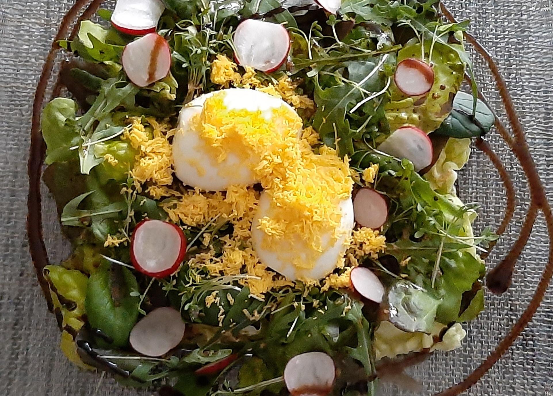 Frühlingssalat Mimosa