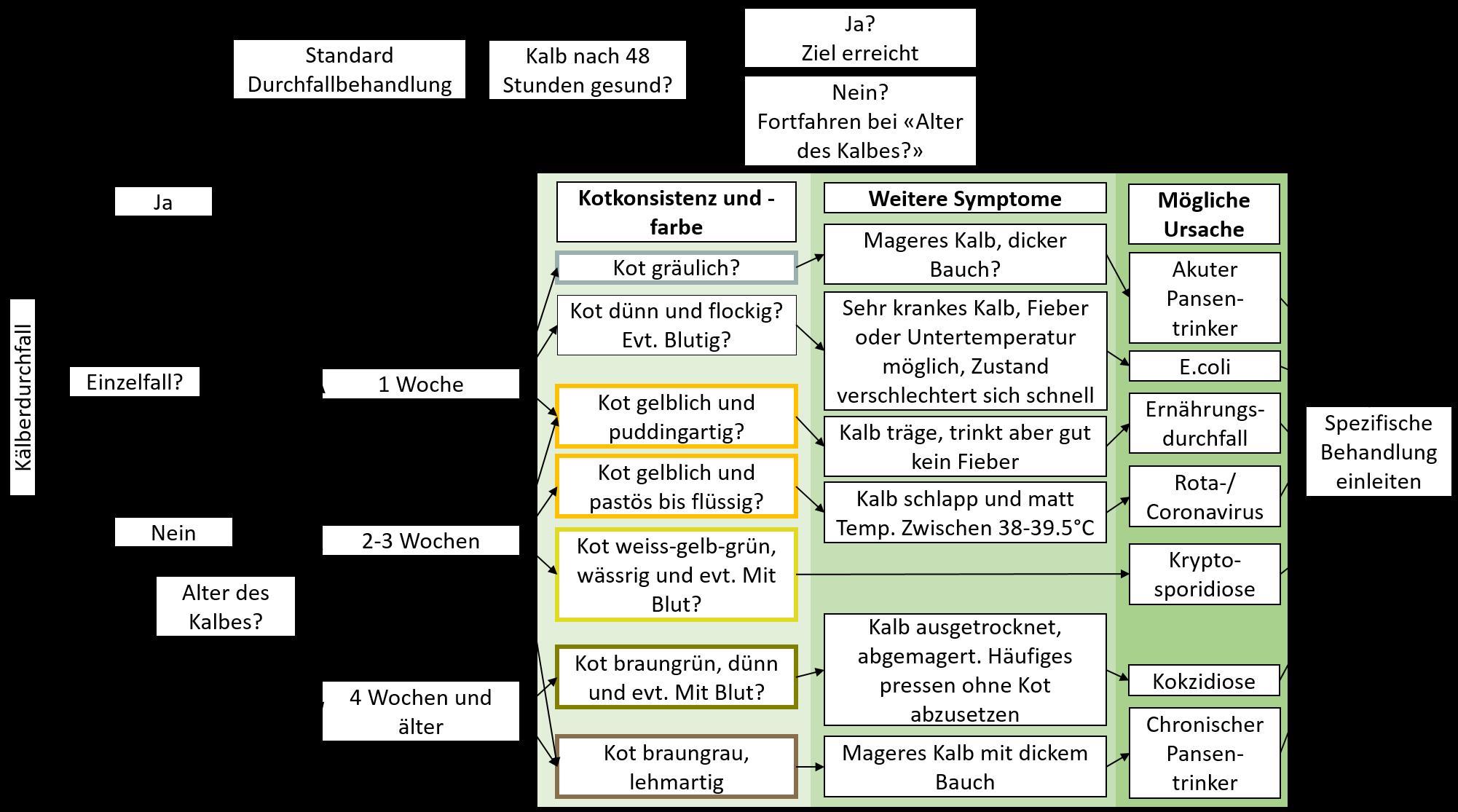 Schema für die Erkennung von Kälberdurchfall